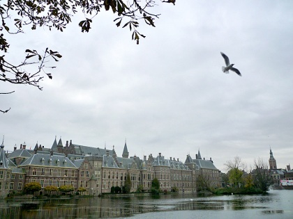 Dutch houses of Parliament, alongside the Hofvijver (lake), The Hague. And a thank you to Mr Seagull for his timely arrival in my frame.